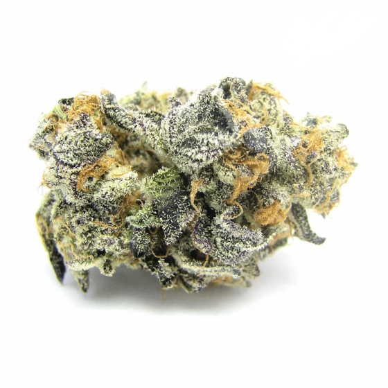 Buy Blue Cookies Marijuana UK