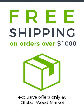 Free shipping for orders above $1000